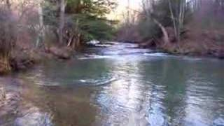 Fly Fishing Rainbow Trout 21-23 inches monster