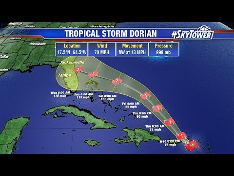 Tropical weather forecast