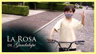 La Rosa de Guadalupe: Toñito se pone a trabajar durante la pandemia   La composición