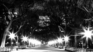 Chris Collins - New York City Hub R.A.P Video