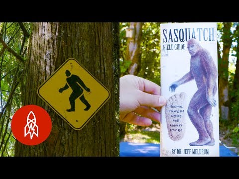 Tracking Down Bigfoot