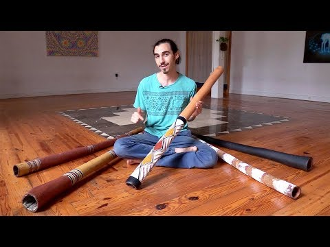 Comparing 5 Eucalyptus Didgeridoos all traditional Aboriginal Australian instruments