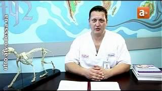 Дерматология 2.mp4(, 2012-04-06T10:09:51.000Z)