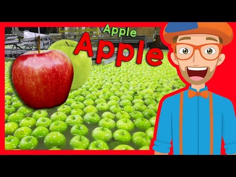 Thumbnail: Fruit for Kids with Blippi | Apple Fruit Factory Tour