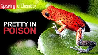 Why don't poison frogs poison themselves? — Speaking of Chemistry