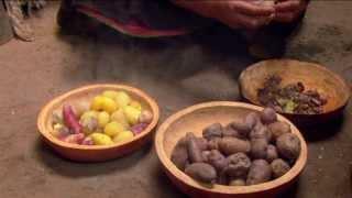 De la tierra a la mesa, la verdadera revolución de la cocina peruana