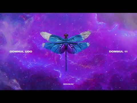 Domnul Udo - Trap House feat. NANE, NOSFE, Shift, Killa Fonic (Audio)