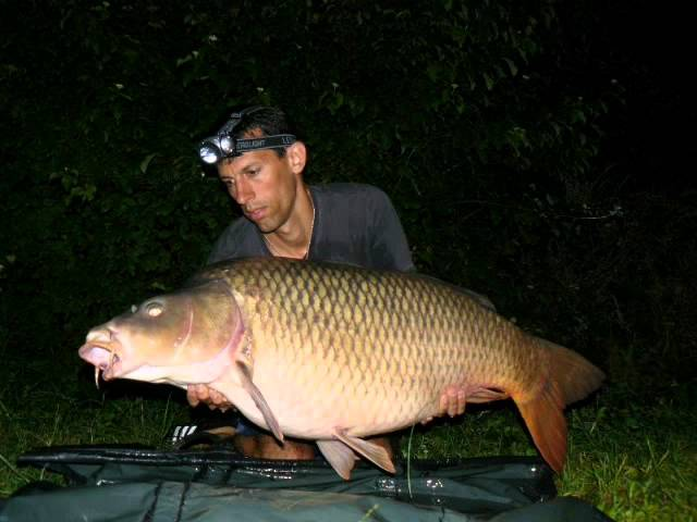 pche-la-carpe-esturgeon-carpemapassion-nokillus-2011-carp-fishing-and-sturgeon-4
