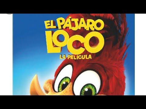 El Pájaro Loco Película  En Español Latino 2019