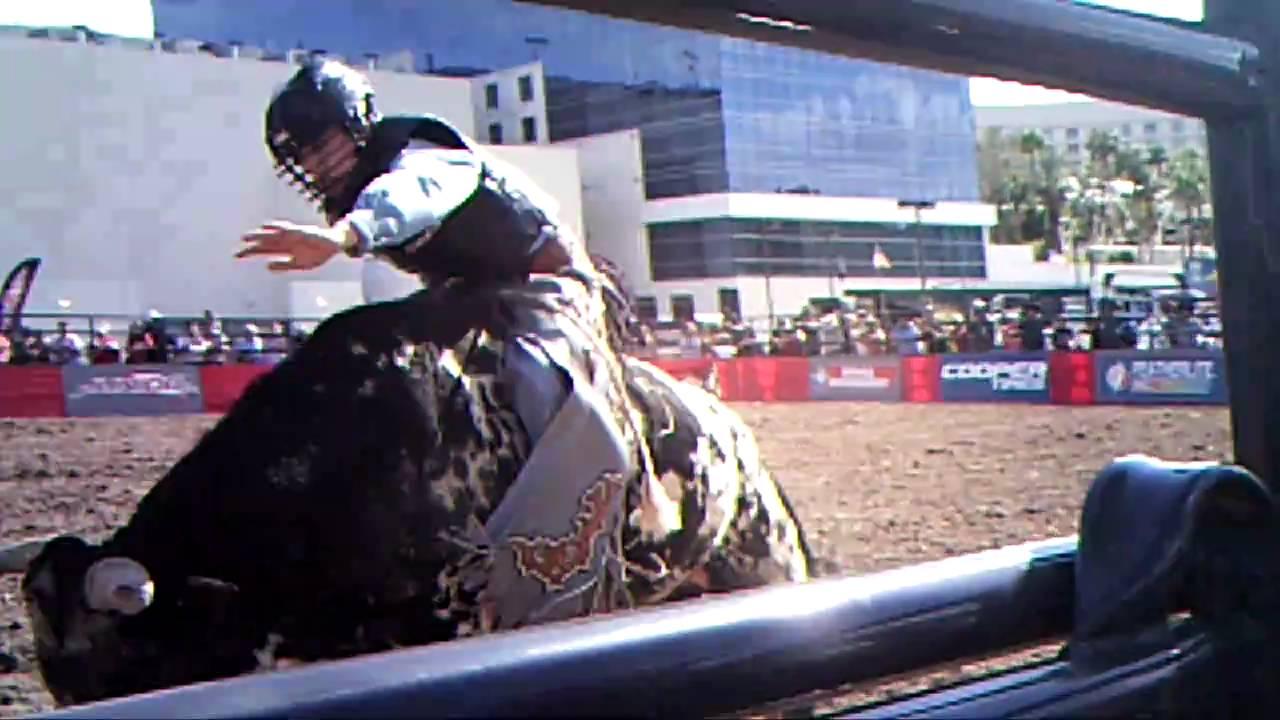 Mini Las Vegas >> Cookie Monster & Broady Yeary mini bucking bulls at PBR world finals Las Vegas - YouTube