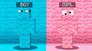 Boy vs Girl Minecraft Hide and Seek Challenge!