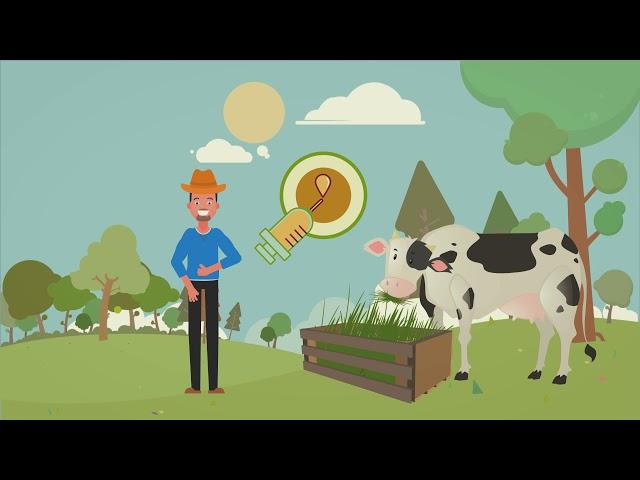 Kompilasi Video Tutorial: Bio-slurry & Lemna