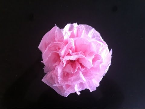 How To Make Beautiful Paper Carnations