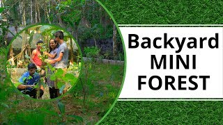 Growing Mini Forest in the Backyard | Growing Forest Fast with with Miyawaki Afforestation | CF02/01