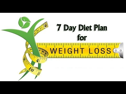 Rated Best Weight Loss Program