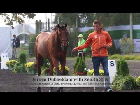 Jeroen Dubbeldam interview May 2016
