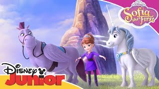 Horse Friends 🦄| Sofia the First | Official Disney Channel Africa