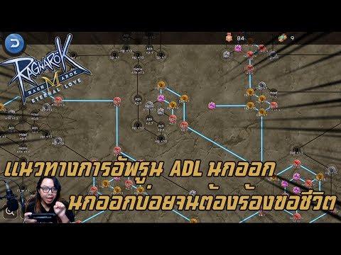 Ragnarok M Eternal Love แนวทางการอัพรูนนักธนูสาย ADL นกออก นกออกบ่อยจนต้องร้องขอชีวิต