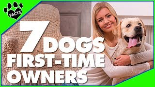 Video 7 Dog Breeds for First-Time Dog Owners Dogs 101 - Animal Facts download MP3, 3GP, MP4, WEBM, AVI, FLV Agustus 2018
