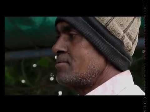 Deshi Banna  Gujarati  Short Film
