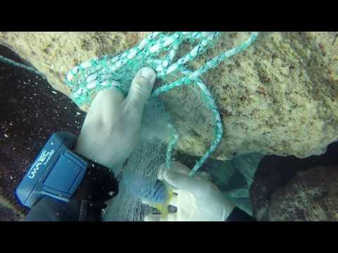 Catching cichlids at Chiwi Rock in lake Malawi