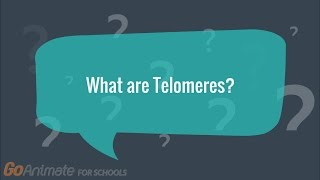 Our aging process is not well understood. we often ask ourselves why age and whether can prolong life. this video explores telomeres as a possible expl...