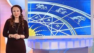 14.12.2015   РЕНТВ  передача