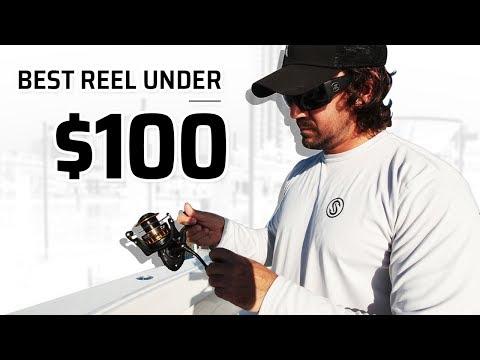 Best Saltwater Fishing Reel Under $100 - I Can't Believe It!