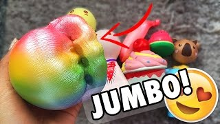 INSANE SQUISHY PACKAGE!!! JennaLynSquishies Squishy Review Package