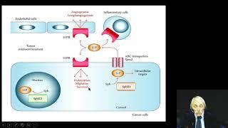 Sphingosine 1-PO3 in Human Disease Dr. Guerra January 2018