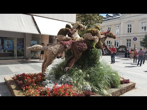 A day in Merano, Italy | Vlog 07