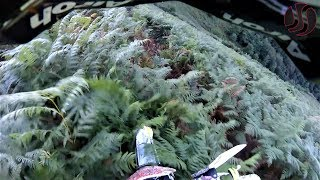 POV Wade Young #55 | Enduro Extreme Licq 2018 by Jaume Soler