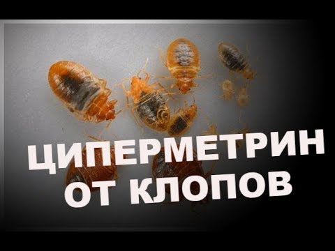 """""""ДАЛИ НОВУЮ ЖИЗНЬ""""!!! Применили """"ЦИПЕРМЕТРИН"""" от """"КЛОПОВ"""". Вызвали """"Биотрикс"""""""