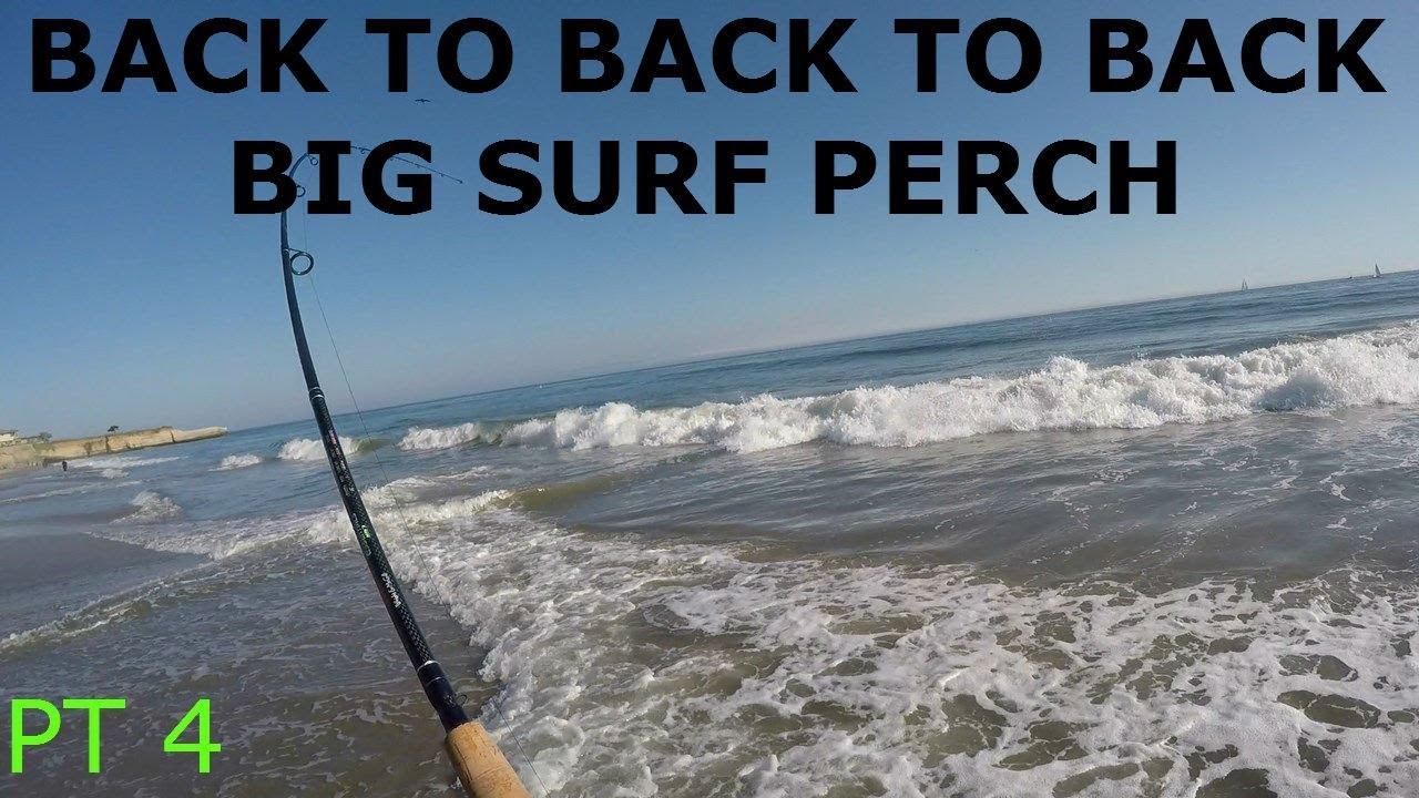 SANTA CRUZ SURF FISHING FOR BIG BARRED SURF PERCH