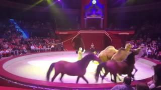Amedeo Folco.cameli e cavalli.circul Globus