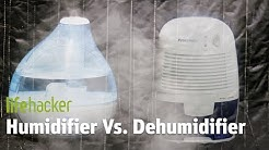 Humidifier VS. Dehumidifier