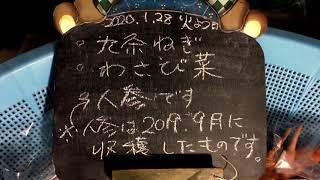 九条ネギ、わさび菜、人参(昨年9月収穫)です 昔ながらの野菜を無農薬で育てています(2011〜) 阪急六甲の鍼灸院前で直売しています(火曜日と金...