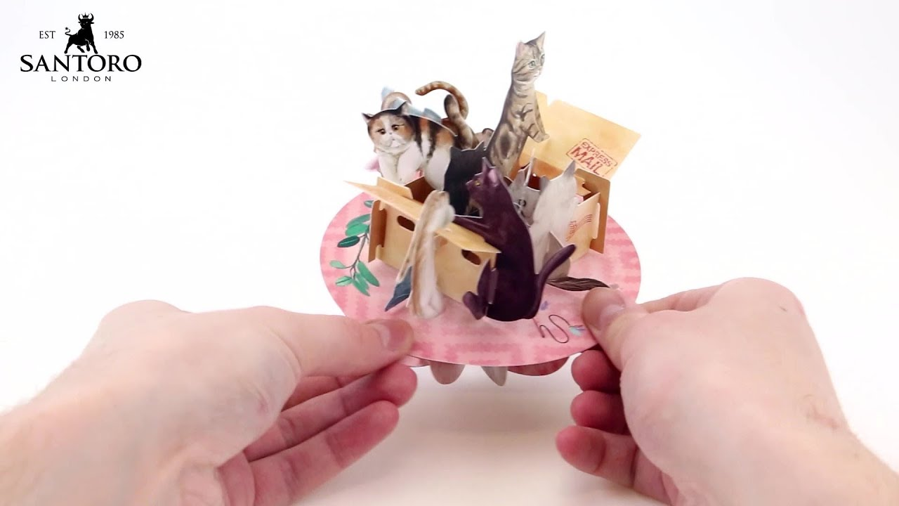 Santoro 3D Pop Up Pirouette Card PS088 - How To