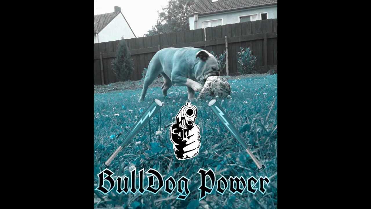 Bushido Hunde