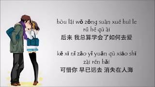 Hou Lai 后来 - Rene Liu 刘若英 - Lyric Pin Yin