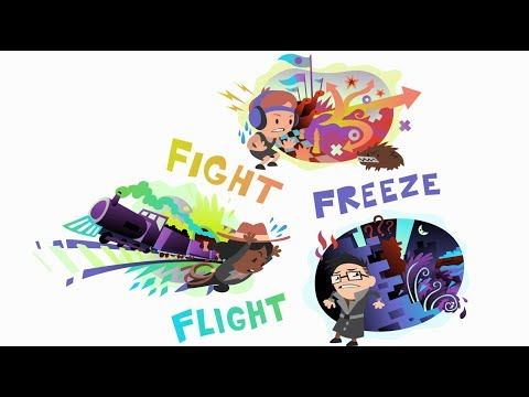 Fight Flight Freeze – A Guide To Anxiety For Kids