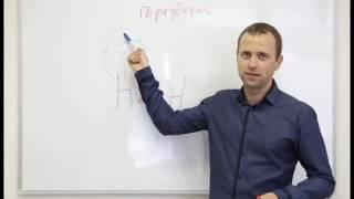 Видео урок №2. Влияние