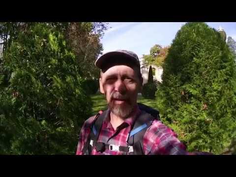 В поисках сосен | Пасть дьявола | Предгорья Кавказа