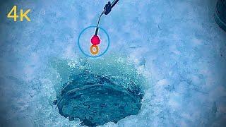 Мормышка рулит Зимняя рыбалка в живописном месте.