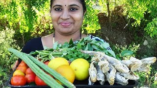 Yummy Vegetable Drumstick Cucumber Curry Wi Dry Fish Recipe Cooking InMy Village By Aunty- Sea foods