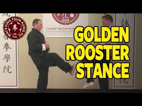 GOLDEN ROOSTER STANCE. GOOD FOR BALANCE, STRENGTH, & BLOCKING KICKS.