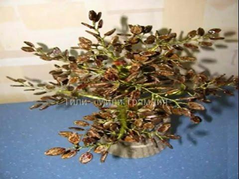 Поделки из арбузных семечек и пластилина - Юлия 51