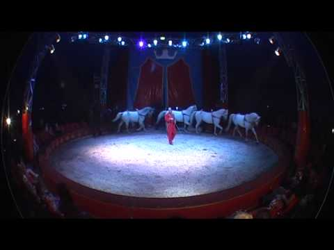 Liberty Horses Represented by : Int.Show Productions