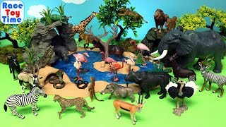 Safari Wild Animals Toy Collection - Learn Animal Names