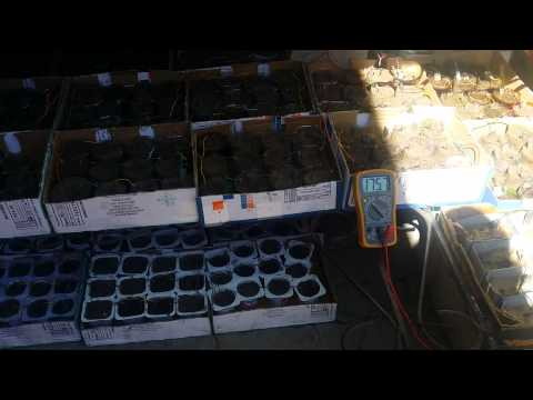 175V Biggest earth battery